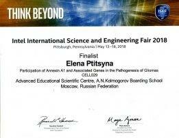 Птицына_сертификат