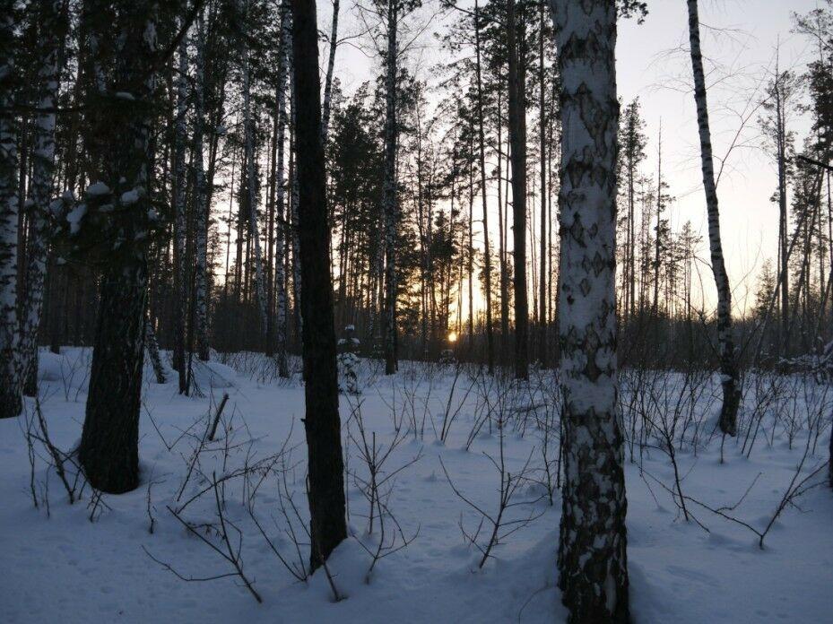 Новосибирск1