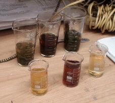 Соколова 3 вида чая